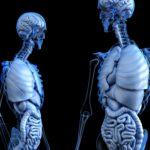 Capacidad de sanación de los tejidos